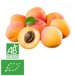 Abricot BIO 500GR