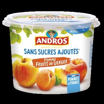Andros Dessert Fruitier Frt Verger Ss Sucre Ajouté Andros Pot 600g