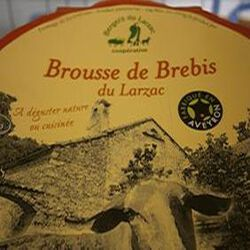 BROUSSE LARZAC:BREBIS 500GRS.