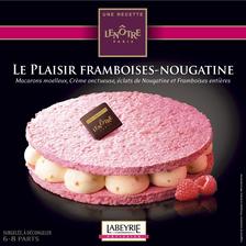 Labeyrie Plaisir Framboise Nougatine Une Recette Lenôtre, , 410g