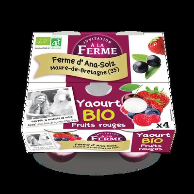 Yaourt aux fruits rouges bio 4x125g Le p'tit gallo