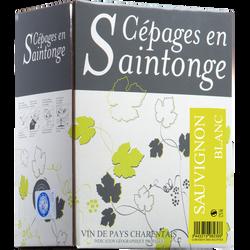 Vin blanc IGP Charentais Sauvignon Cépages Saintonge, fontaine à vin de 3l