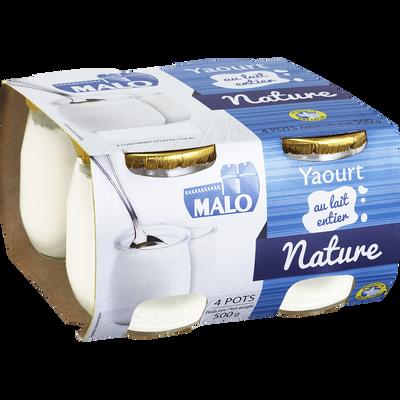 Yaourt au lait entier nature MALO, pot en verre 4x125g