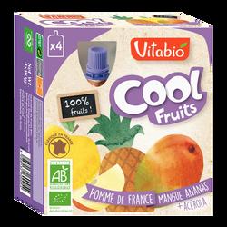 Cool fruits pomme mangue ananas VITABIO, 4 gourdes de 90g