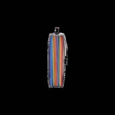 Valisette trieur Rainbow Class VIQUEL, 12 positions