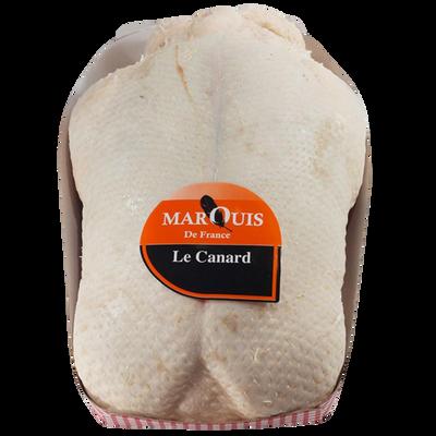 Canard pac sous film provenance 49/85, 3kg