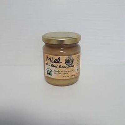 Miel de forêt MIEL DU PAYS ROANNAIS pot 500g