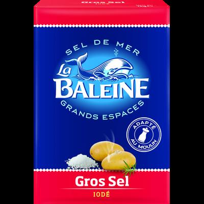Gros sel iodé LA BALEINE, carton de 1kg