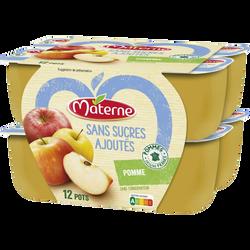 Spécialité de fruit pomme sans sucres ajouté MATERNE, 12x100g