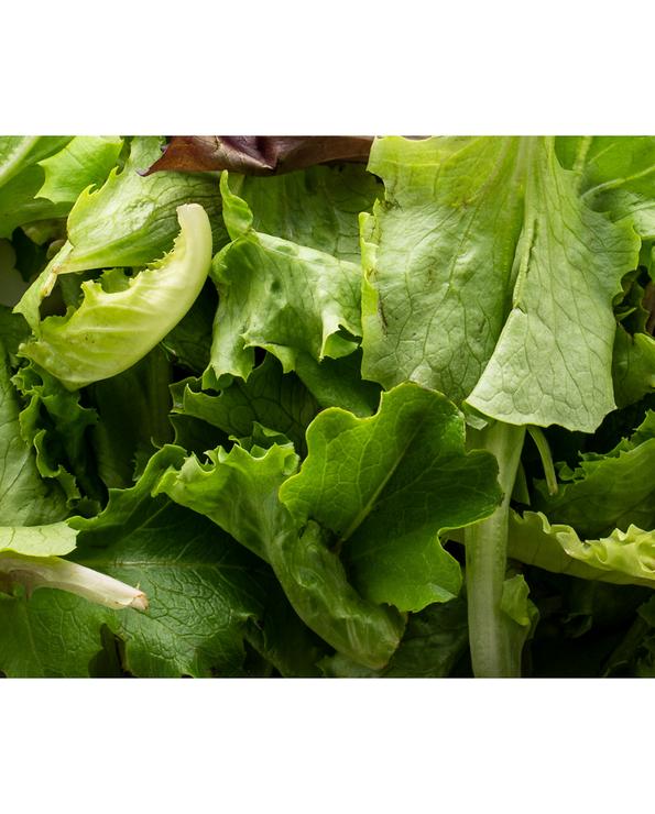 Salade de nos producteurs, BONDUELLE, sachet de 125g