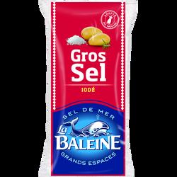 Gros sel blanc iodé LA BALEINE, sachet de 1kg