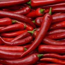 Piment rouge, BIO, Italie