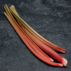 Rhubarbe, BIO, France, botte 500g