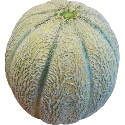 Melon charentais jaune, calibre 1,15/1,35kg, Espagne, la pièce