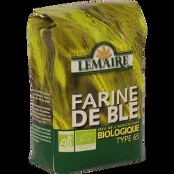 Farine de blé bio T65 LEMAIRE, 1kg