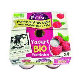 *YAOURT FRAMB.FERM. BIO 4X125G