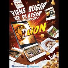 Nestlé Céréales Lion, Paquet De 480g