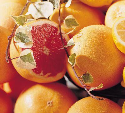 Pomelos origine Espagne