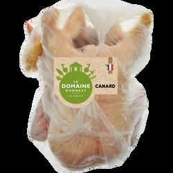 Canard gras entier, DOMAINE D'ERNEST, France, 1 pièce