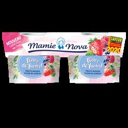 Yaourt fruit rouges fleur de sureau MAMIE NOVA, 2x115g