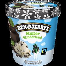 Crème glacée minter wonderland BEN & JERRY'S, pot de 438g