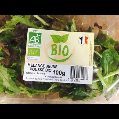 Mélange jeunes pousses, BIO, France, barquette de 100g
