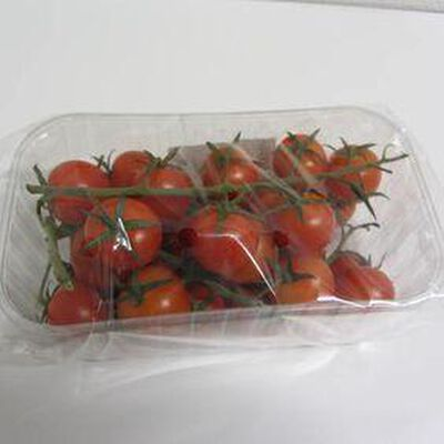Tomate cocktail  barquette 500 grs - France - cat 1 -