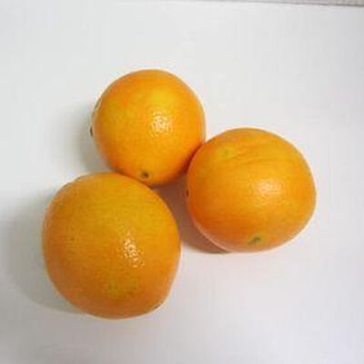 Orange naveline - Espagne - cat 1 - cal 4 -