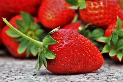 FRAISE CLERY BARQ 250G