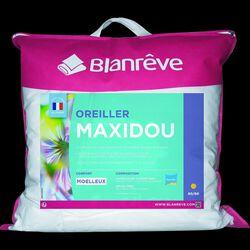 "OREILLER MOELLEUX 60X60CM ""MAXIDOU"" BLANREVE"
