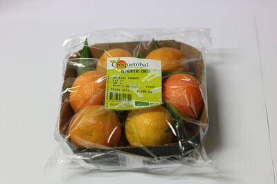 Clementine (6 Fruits) BIO