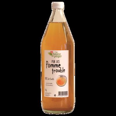 Jus de pomme trouble LA SOURCE DU VERGE, bouteille 1l