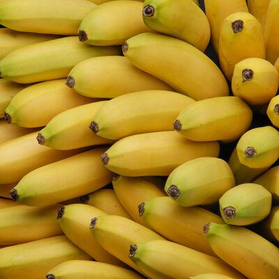 Banane Fairtrade Cavendish, BIO, calibre p20, cat.1, origine Rep.Dominicaine