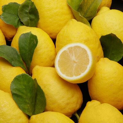 Citron jaune verna, U, Calibre 4, Catégorie 1, Non traité aprèsrécolte, Espagne, sachet 4 fruits