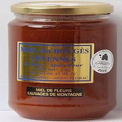 Miel de fleurs sauvages de montagne du Bouges Cévennes, 500g