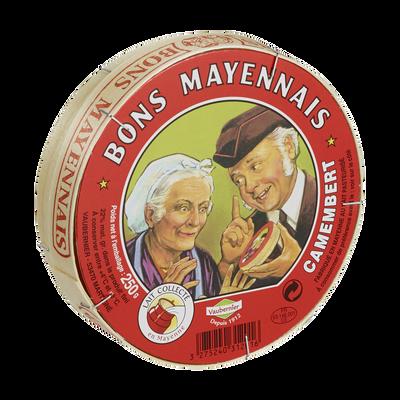 Camembert au lait pasteurisé BONS MAYENNAIS, 22%MG, 250g