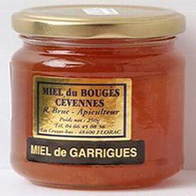 Miel de garrigues du Bouges Cévennes, 250g