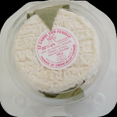 Cabris au lait thermisé de chèvre LAVERGNE, 22% de MG, 180g