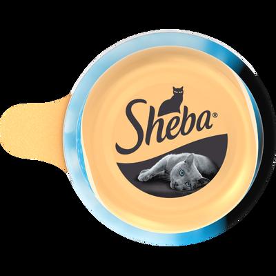 SHEBA dôme filets de thon et poisson de l'océan, 80g