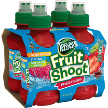 Fruit Shoot fruits rouge TEISSEIRE, 4 bouteilles de 20cl