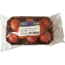 Tomate ronde, segment Les rondes, BIO, catégorie 2, Espagne, barquette, 500g