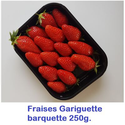 FRAISE EXTRA PLATE 250G