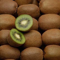 Kiwi Hayward, BIO, calibre 93/105g, catégorie 2, Nouvelle Zélande, barquette 4 fruits