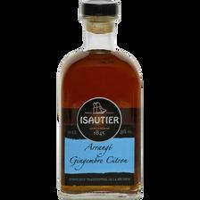 Arrangé ISAUTIER gingembre citron, 40°, bouteille de 50cl
