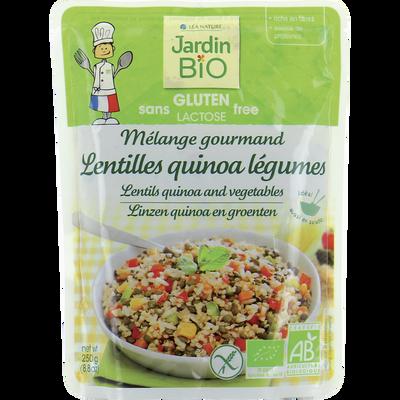 Mélange gourmand lentille quinoa légumes bio sans gluten JARDIN BIO, sachet individuel de 250g