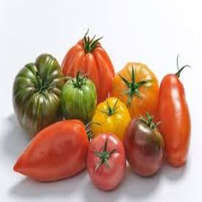 Tomate saveur d'antan, 500g