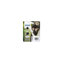 Cartouche d'encre EPSON pour imprimante, T0891 noir Babouin, sous blister