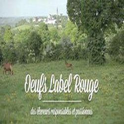 """12 oeufs """"confiance"""" plein air label rouge"""