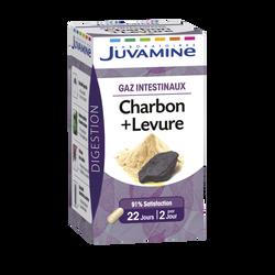 Gélules charbon + levure pour gaz instestinaux JUVAMINE, x45