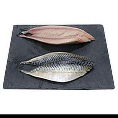Filet de Maquereau, Pêché en Atlantique Nord-Est, Scomber scombrus
